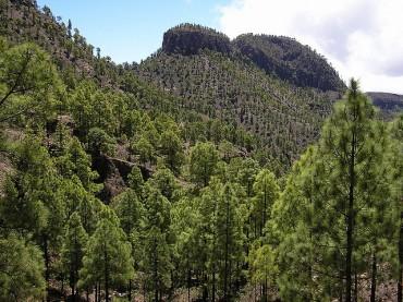 Parco Naturale di Pilancones Gran Canaria